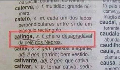 catinga-definicao-web